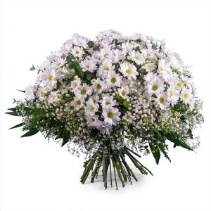 Bouquet of White Margaritte Daisies